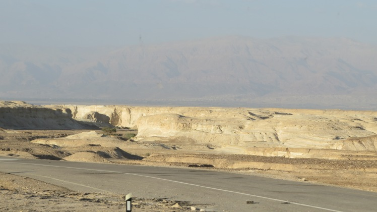 This picture was take just south of the Dead Sea, therefore it's very barren, and very little grows here.