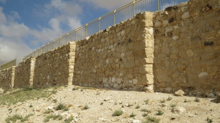 Tel Arad in the norther Negev area.