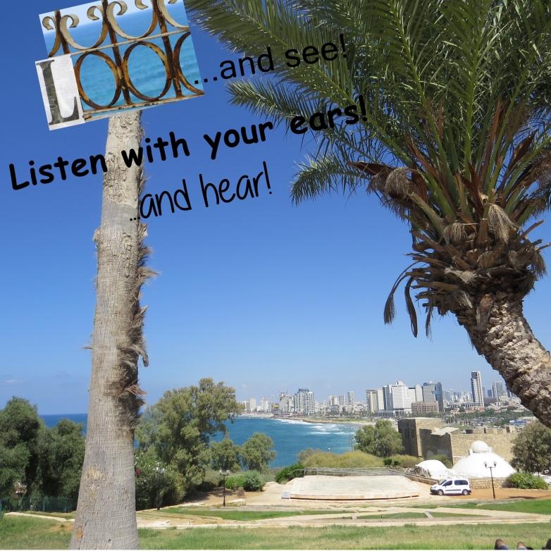 israel-2016-day-1