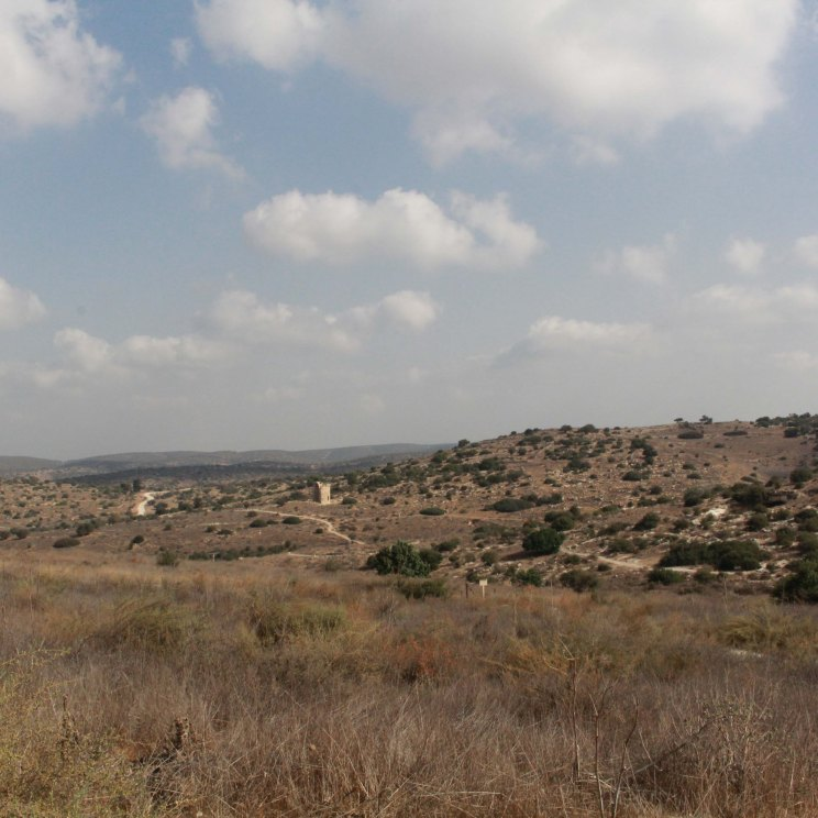 Maresha countryside